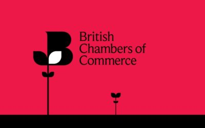 BCC appoints Adam Marshall as Director General
