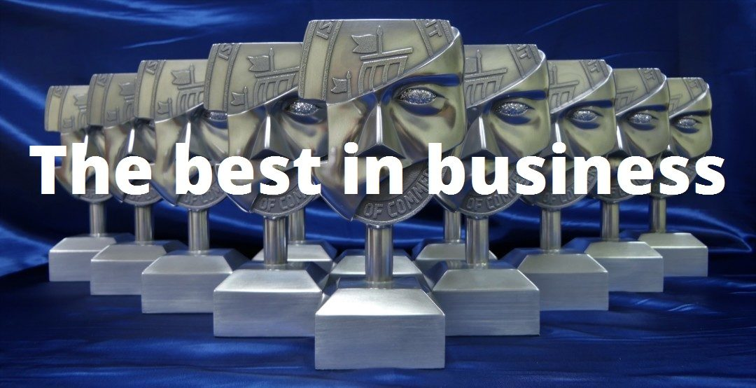 Business Awards For Excellence 2017